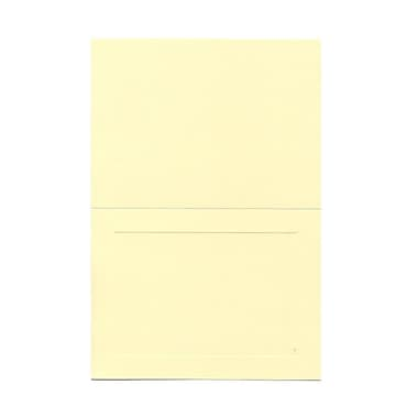 JAM Paper® 4 5/8in. x 6 1/4in. Smooth Panel Blank Foldover Cards, Ivory, 25/Pack