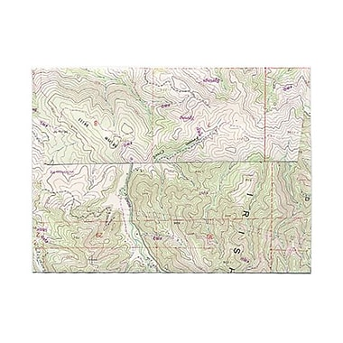 JAM Paper® A6 Invitation Envelopes, 4.75 x 6.5, Made with Real Map Surplus, 100/Pack (163730g)