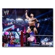 Trademark Fine Art Officially Licensed WWE The Rock Canvas 18x24 Inches