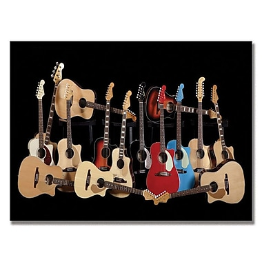 Trademark Fine Art Fender 'Acoustic' Canvas Art