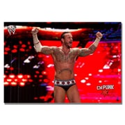 Trademark Fine Art Officially Licensed WWE CM Punk Canvas 22x32 Inches