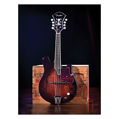 Trademark Fine Art Fender 'Mandolin' Canvas Art