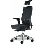 Jesper Office Jesper Office Trina Mesh Executive Office Chair; Black