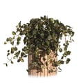 Vickerman 12in. Pepperomia Ivy Metal Windowbox Planter