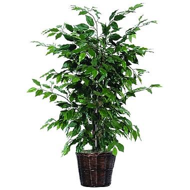 Vickerman 4' Artificial Ficus Bush In Decorative Rattan Basket With Dark Green Leaves