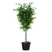 Vickerman 6' Artificial Ficus Deluxe Tree In Rattan Basket, Green