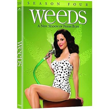 Weeds S4 (DVD)