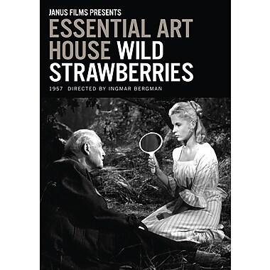 Wild Strawberries (Essential Art House) (DVD)