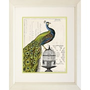 "Diamond Decor High Quality Framed ""Peacock Birdcage I"" Print Art, 22"" x 28"""