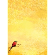 LANG® 3 1/2 x 5 12/Pack Bee Eaters Petite Note Cards