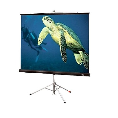 Draper® 213003 99in. Diplomat Portable Projection Screen, 1:1, White Casing
