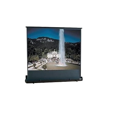 Draper® 230001 60in. Roadwarrior Portable Projector Screen, 4:3, White Casing