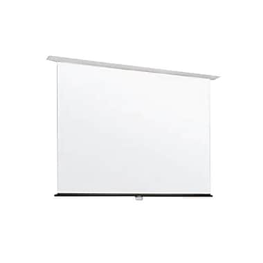 Draper® 205006 135.8in. Apex Manual Projection Screen, 1:1, White Casing