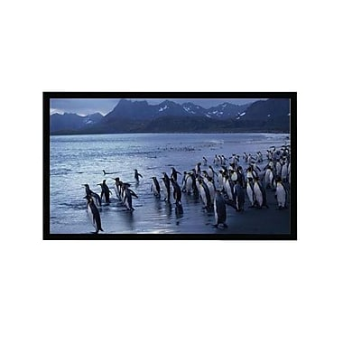 AccuScreens® 800015 84in. Fixed Frame Projection Screen, 4:3, White Casing