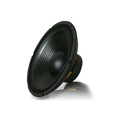 Technical Pro WF12.1 800 W 12in. Raw Subwoofer, Black