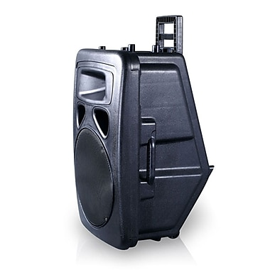 Technical Pro WASP1300 Portable PA System With Rechargeable Battery/Microphones/Bluetooth, 1300 W