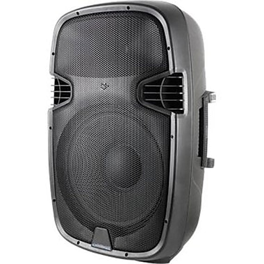 Technical Pro PW1255UI 12in. 2 Way Active Loudspeaker With USB/SD Card Inputs and iPod, Black
