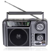 QFX R-7U AM/FM/SW1-SW2 Radio With USB/SD/Built-in Rechargeable Battery