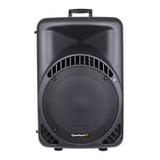 QFX BX-151 450W 2-Way Steel Framed Plastic Cabinet Passive Speaker, Black