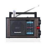 QFX R-25U AM/FM/SW Radio With USB