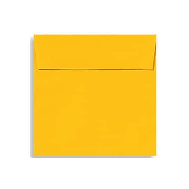 LUX 5 1/2 x 5 1/2 Square Envelopes 50/Box) 50/Box, Sunflower (EX8515-12-50)