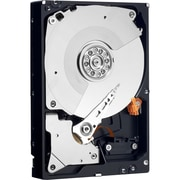 "Western Digital® Re™ WD3000FYYZ 3TB SATA 6 Gbps 3.5"" Internal Hard Drive"