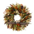 The Christmas Tree Company Owl Pals 16in. Dried Floral Wreath