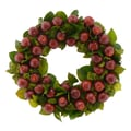 The Christmas Tree Company Abounding Apples 18in. Dried Floral Wreath