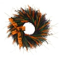The Christmas Tree Company Halloween Festival 22in. Dried Floral Wreath
