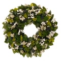 The Christmas Tree Company Peaceful Garden 22in. Dried Floral Wreath