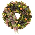 The Christmas Tree Company Holiday Lotus Pods 18in. Dried Floral Wreath