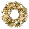 The Christmas Tree Company Oceanic Shine 18in. Seashell & Dried Floral Wreath