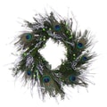The Christmas Tree Company Peacock Frost Festival 18in. Dried Floral Wreath