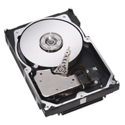 Seagate Cheetah 300 GB SCSI (2 1/2 Internal Hard Drive