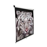 Elite Screens Manual SRM 120 Projection Screen, 169, MaxWhite FG