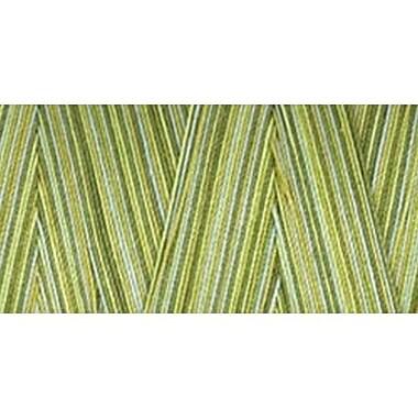 Star Mercerized Cotton Thread Variegated, Fall Vines, 1200 Yards
