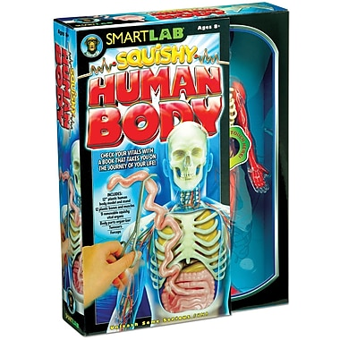 Smartlab® Squishy Human Body Kit