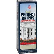 Floracraft® 'Monument Edition' Project Bricks, 285 Pieces