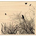 Penny Black® 4in. x 4 1/2in. Rubber Stamp, Winter Sky