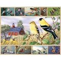 White Mountain Puzzle 24in. x 30in. Jigsaw Puzzle Multi Picture, in. Songbirds in.