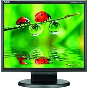 NEC LCD175M-BK 17 LED LCD Desktop Monitor With Built-In Speakers, Black