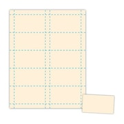 Blanks/USA® 3 1/2 x 2 90 lbs. Index Business Card, Ivory, 500/Pack