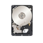 Seagate Constellation ES.3 1TB SATA (6 Gb/s) 7200 RPM 3 1/2 Internal Hard Drive