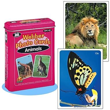 Super Duper® Webber® Animals Photo Deck Cards