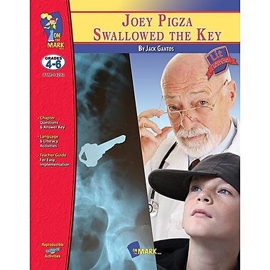 Joey Pigza Swallowed the Key Lit Link, Grade 4-6