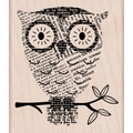 Hero Arts® 4in. x 4in. Mounted Rubber Stamp, Big Eyes