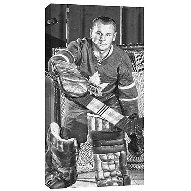 Johnny Bower Canvas, Toronto Maple Leafs