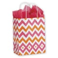 Chevron Shoppers With Cub, Mini Pack, Pink/Orange, 8 1/4in. x 4 3/4in. x 10 1/2in.