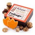 Mrs. Fields® Fall Wishes Bites Box
