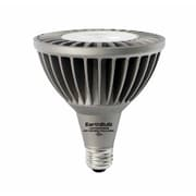 Earthbulb® 20 W PAR38 LED Bulb, Warm White